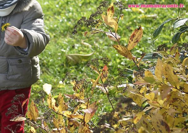 Hérisson en feuille d'automne - étape 1
