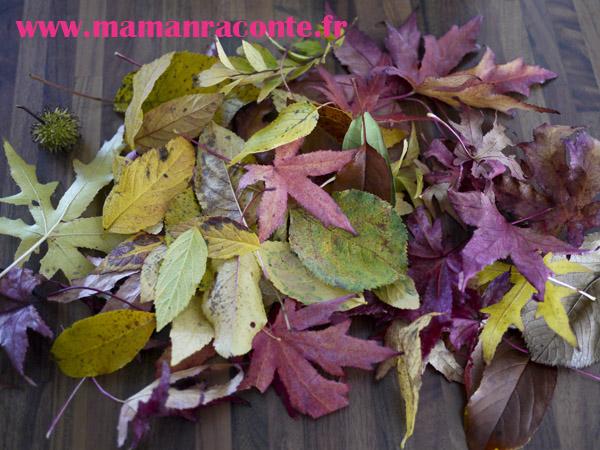 Hérisson en feuille d'automne - étape 2