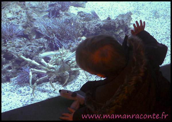 Aquarium de Lyon 2