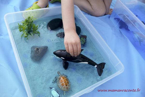 bac sensoriel de la mer - enfant 10