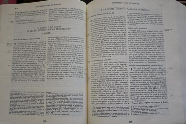 La bible en 1001 briques - 2