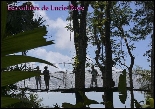 12. Le Jardin de Balata