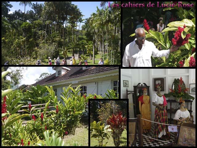 3. Le Jardin de Balata