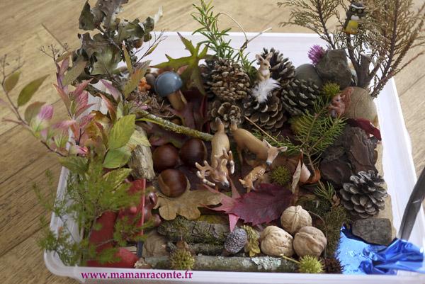 Bac sensoriel de la forêt 3 © les cahiers de Lucie-Rose