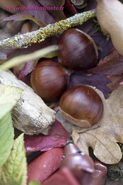 Bac sensoriel de la forêt 7 © les cahiers de Lucie-Rose