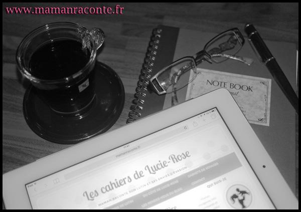Résolutions 2016 - Les cahiers de Lucie-Rose
