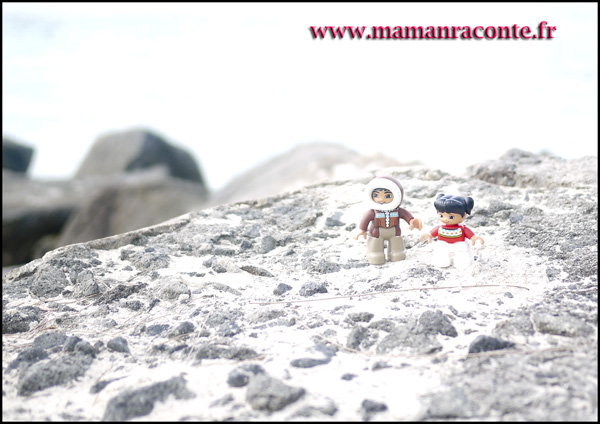 3. Les animaux de l'Arctique DUPLO © les cahiers de Lucie-Rose - mamanraconte