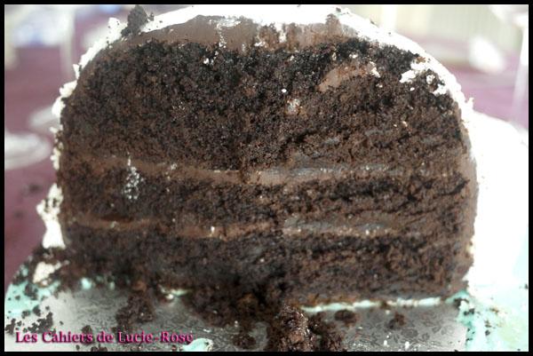 Gâteau igloo - les cahiers de Lucie-Rose 11
