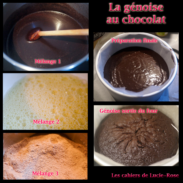 Gâteau igloo - les cahiers de Lucie-Rose 4