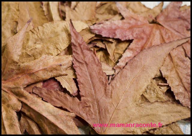 7-bricolage-arbre-dautomne-et-ses-dernieres-feuilles